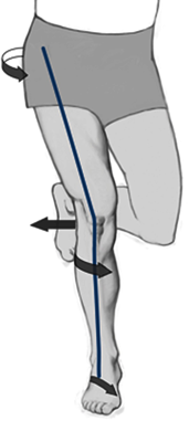 leg stance